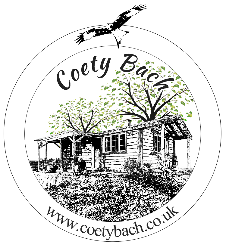 Coety Bach- Llandrindod Wells -The wooden cabin on the hill
